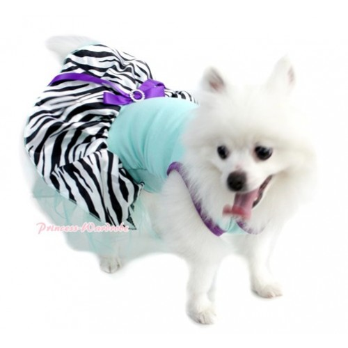 Dark Purple Aqua Blue Sleeveless Aqua Blue Zebra Gauze Skirt With Dark Purple Rhinestone Bow Pet Dress DC025
