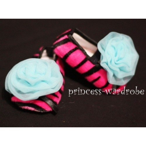 Baby Hot Pink Zebra Crib Shoes with Light Blue Rosettes S24