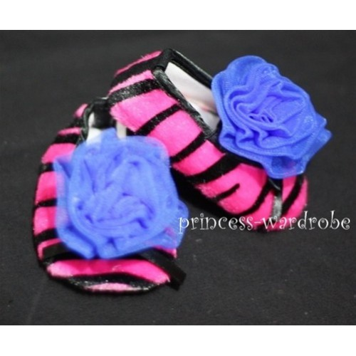 Baby Hot Pink Zebra Crib Shoes with Royal Blue Rosettes S31